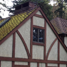 roof moss removal, roof moss treatment, moss removal, moss treatment, home moss removal, home moss treatment, environmentally safe moss removal, environmentally safe moss treatment, eco safe moss removal, eco-safe moss removal, eco safe moss treatment, eco-safe moss treatment, eco friendly moss removal, eco friendly moss treatment, biodegradable moss removal, biodegradable moss treatment, organic moss removal, organic moss treatment, natural moss removal, natural moss treatment, how do i get moss off my roof, roofmoss.com, silverdale, bremerton, port orchard, gig harbor, bainbridge island, port townsend, tacoma